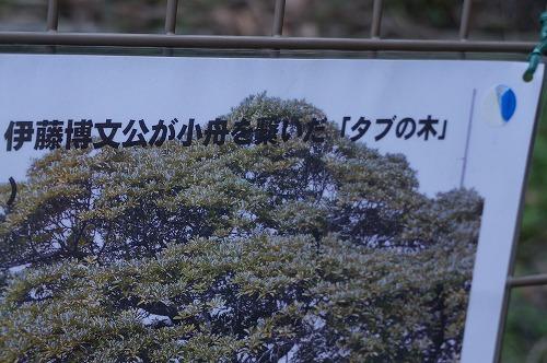 DSC03285.jpg