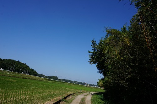 DSC06363.jpg
